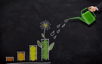 ESG investing trend accelerates